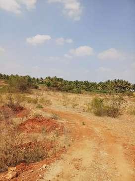 2 acres agricultural land suitable for schools latout etc