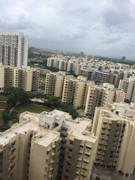1 bhk flat available on rent in casa rio