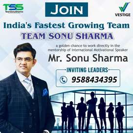 Bussiness Consultant