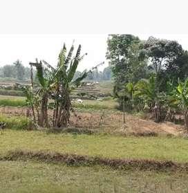 Dijual BU tanah cempaka cisoka balaraja lt 2244m brsebelahan perumahan