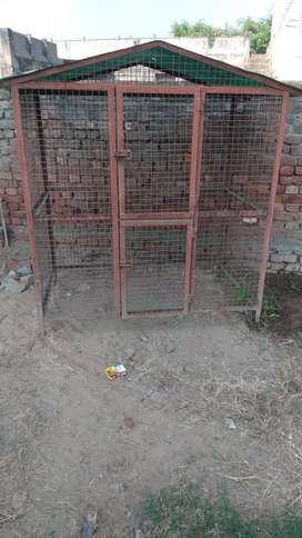 Dog ,birds cage (pinjra )