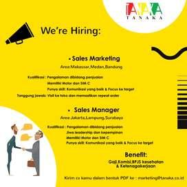 Dibutuhkan Sales Manager Medan