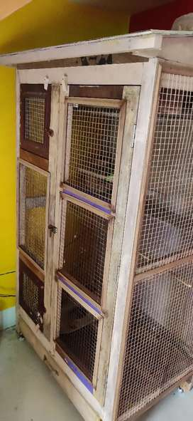 1 Big Bird Cage for sell