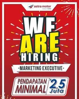Team Leader & Marketing