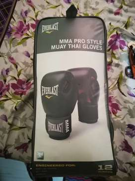 MMA Gloves Everlast