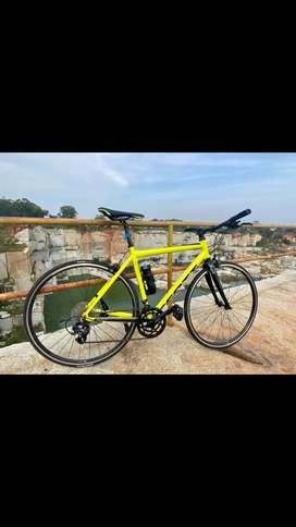 Scott Speedster Flat Bar Road Bike
