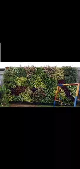 Tukang Taman Vertical Garden/Terima Pembuatan Taman