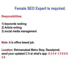 Female SEO Expert required