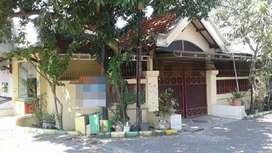 Rumah Wisma Lidah Kulon, Bagus, Luas Besar, Row Jalan Ok, Murah Poll