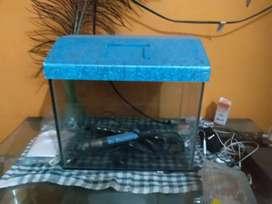 Fish tank 1 ft