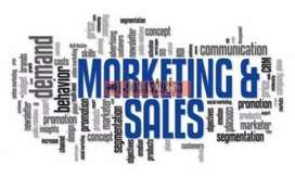 Sales and marketing person requires