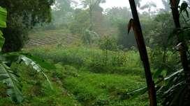 Nego* Dijual Tanah 556m2 (Pesanggrahan-Ujungberung-Bandung)