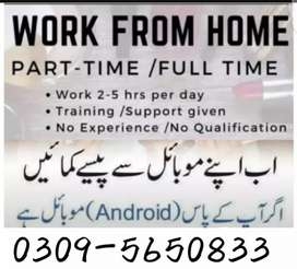 Home based  /full time - part time/( students ,teachers ) male female