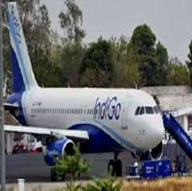 hiring for grounds staff Indigo Airlines.
