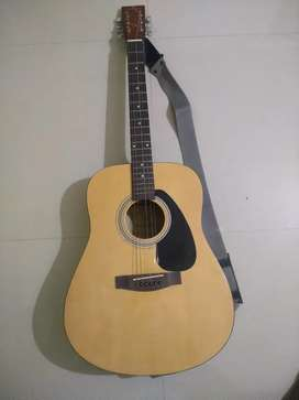Guitar ( Kadence Dreadnought Full Size Acoustic Guitar )
