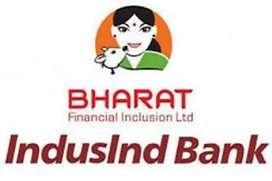 IT Associate requirement at Bharat Financial Inclusion Ltd