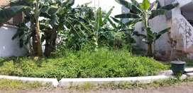 Jual Tanah Pasuruan, Jln. Rambutan