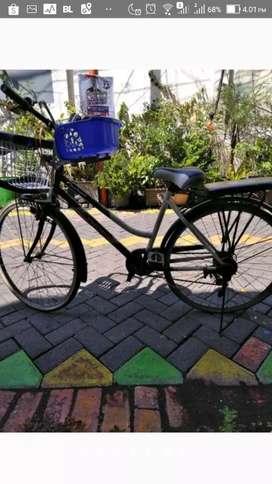 Sepeda keranjang phoenix