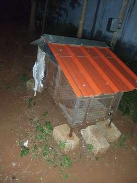 Chicken Cage for sale