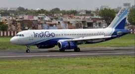 Indigo Airline - We are looking for bright, energetic candidates to jo