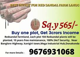 1065 sq. Yards 6lakhs only