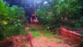 House&plot