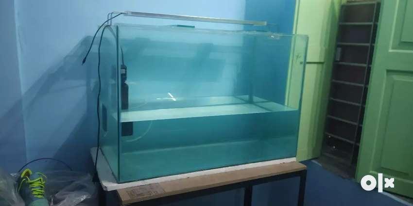 Aquarium set dual head 0