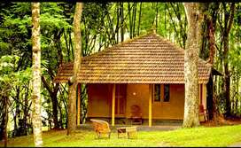 Stay at wayanad