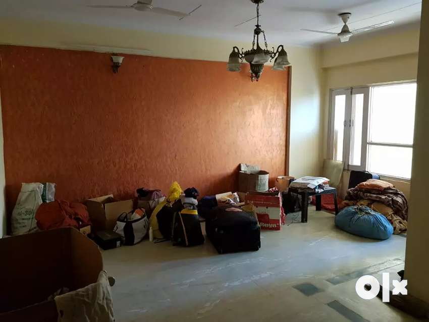 Need a flatmate for1 single room in 3bhk flat in Niho Scottish Garden. 0