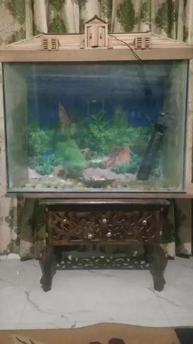 Fish Aquarium with filter and LED Light and Top