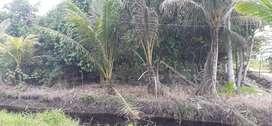 Di jual tanah di jalan Parit sembin ayani 2