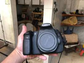 canon 60d only body