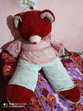 Teddy Bear for sale