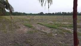 Kavling produktif siap bangun Agrovillage Di Pekanbaru
