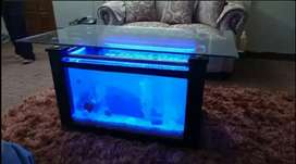 Table Aquarium Center Table Aquariun coffee table