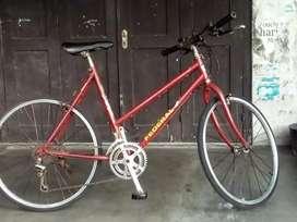 sepeda federal asli