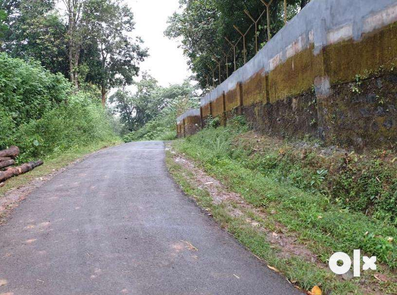 property near to thirunnelly temple