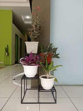 Rak bunga besi minimalis