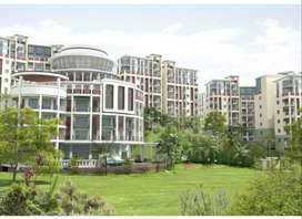 A 3 Bhk flat, located in pator kuchi, guwahati, is available.