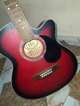 Guitar very well conditiona only two month use