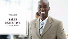 Sales executive requires experience must