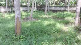 Residential 8 cent plot for sale inTrivandrum City-8.15 lakhs per cent
