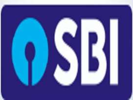 Argent hiring for sbi Field boy in job