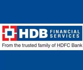 Bank Job in Chandigarh HDB Bank Urgently Required Fresher Male Female