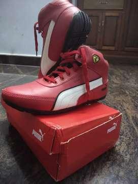 New Puma ferrari original red shoes  for sale