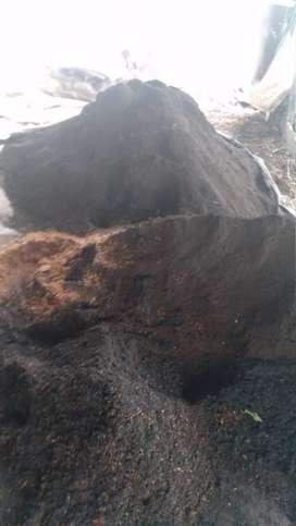 Readi tanah pupuk