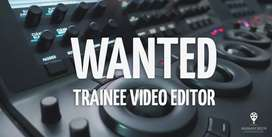 Video editor wanted - Adobe After effects and others