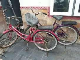 Sepeda mini normal