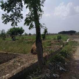 Tanah Pekarangan Grinting Asri Zona Berkembang Legalitas SHM