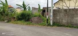 Tanah Murah Di Denpasar Jln Sedap Malam ,Dekat Ke Sanur,Plaza Renon